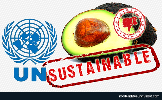 unsustainable-avocados-agenda21-neworldorder-unitednations